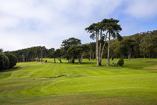 San Francisco Golf by Jianghui Zhang