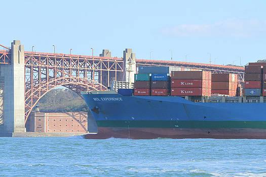 Steven Lapkin - San Francisco Shipping
