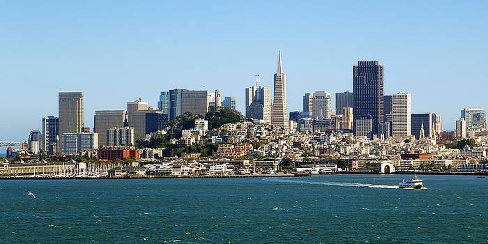 Kelley King - San Francisco Skyline