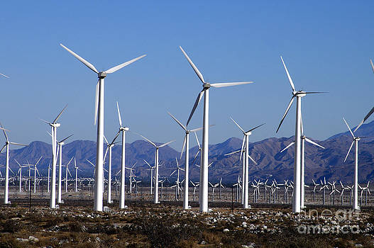San Gorgonio Wind Park Palm Spgs Area by Howard Koby