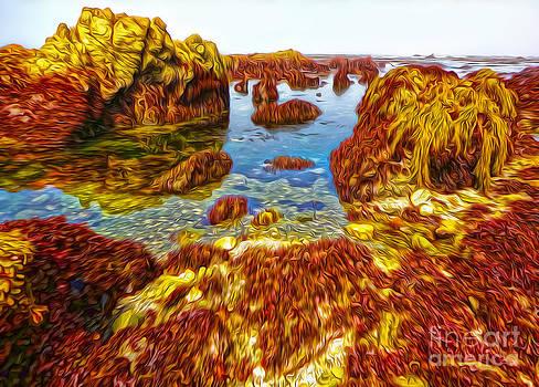 Gregory Dyer - San Simeon - Sea Shore - 03