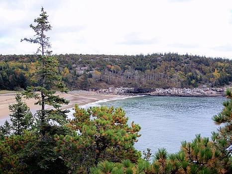 Gene Cyr - Sand Beach Fall