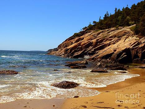 Christine Stack - Sand Beach in Acadia National Park Maine