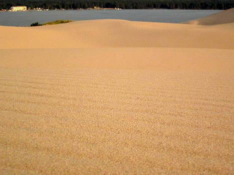 Sand between my toes by Danielle Allard