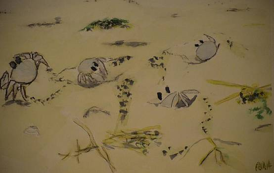 Sand Crabs by James Cox