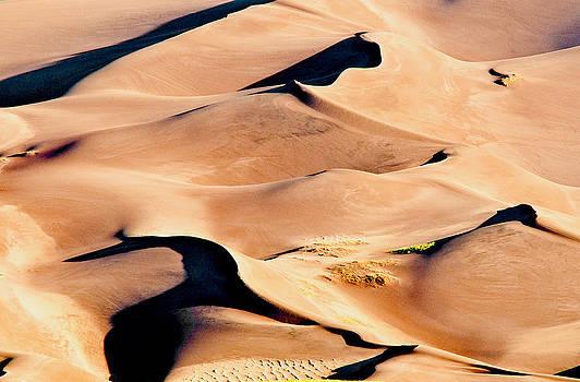 Mae Wertz - Sand Dune Abstract