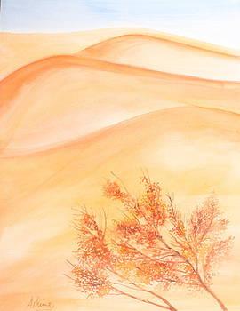 Sand Dune Haze by Ashima Kaushik