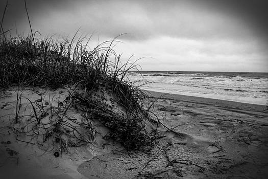 Sand Dune by Nelson Watkins