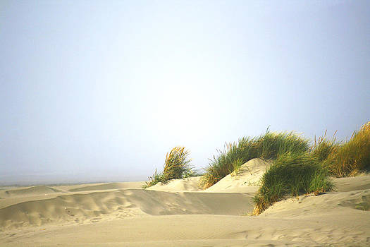 Veronica Vandenburg - Sand Dune Oregon Coast