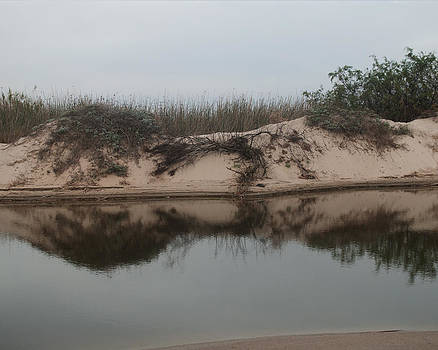 Sand dune reflection  by Sammy Miller
