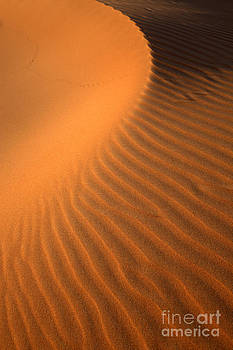 Fototrav Print - Sand Dunes