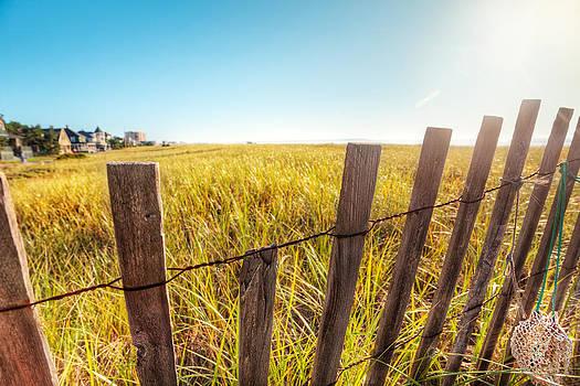 Jo Ann Snover - Sand dunes morning sun