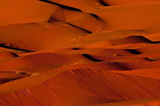 Sand in Motion by Phil Dyer