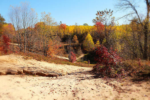 Scott Hovind - Sand pit