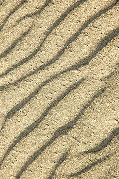 Sand Ripples by Rob Huntley
