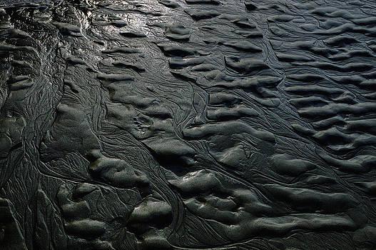 Donna Blackhall - Sand Sculpture
