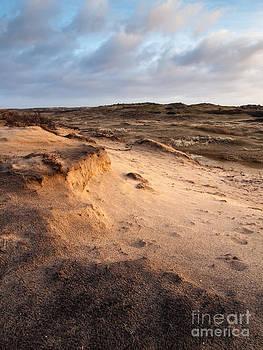 Sand Step by David Hanlon