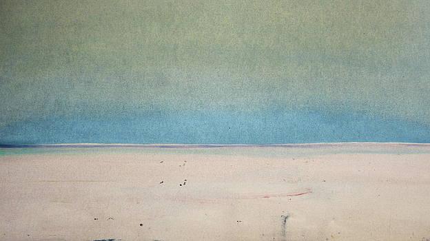 Sand Swept by Michael Baroff