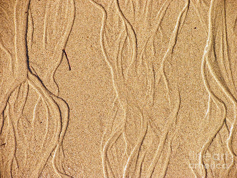 Sand Texture 2 by David Doucot
