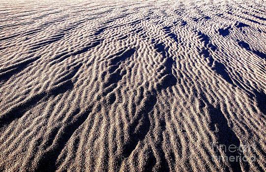 Sand Waves by Charles Dobbs