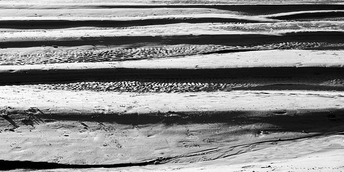 Sand Waves by Trevor Wintle