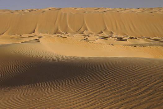 Michele Burgess - Sandfall
