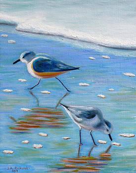 Shore birds by Jennifer Richards