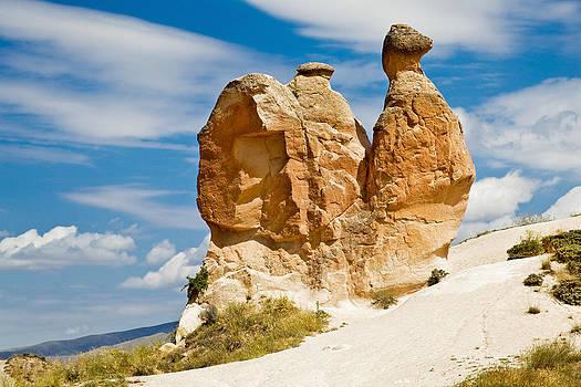 Kantilal Patel - Sandstone Snail Camel Shape