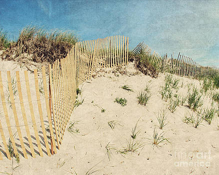 Sandy by Jillian Audrey Photography