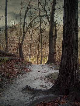 Sandy Pathway by Sue Midlock