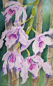 Sandy's Orchids by Kathleen Rutten