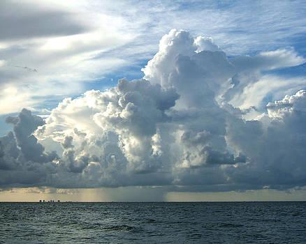 Sanibel Sky by Rosie Brown