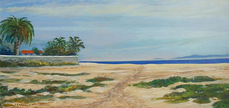 Santa Barbara East Beach access by Jeffrey Campbell