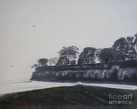 Ian Donley - Santa Barbara Shoreline Park