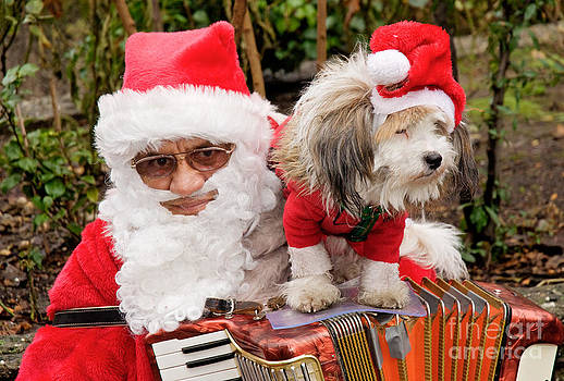 Santa busker with dog Germany. by David Davies