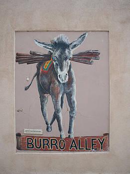 Elizabeth Rose - Santa Fe Burro Alley