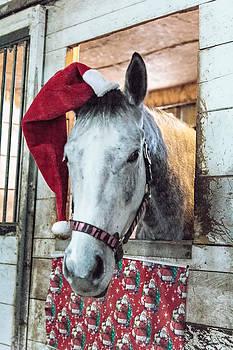 Santa Horse by Jim Koniar