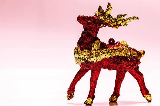 Santas rain deer . by Slavica Koceva