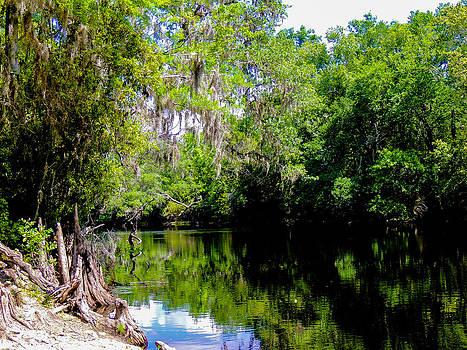 Sante Fe River by Gordon H Rohrbaugh Jr