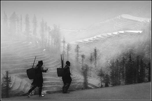 Sapa Morning Mist by Ducte Le