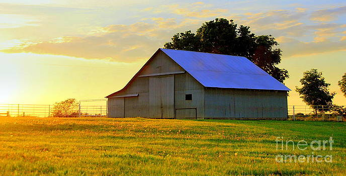 Sapp Barn At Sunset by Christy Phillips