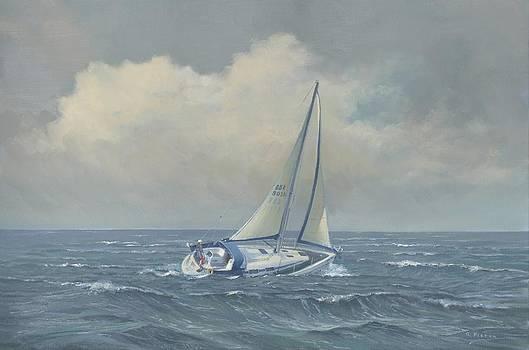 Sarah Jane by Richard Picton