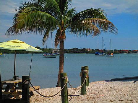 Sarasota Bay at Olearys by Elaine Haakenson