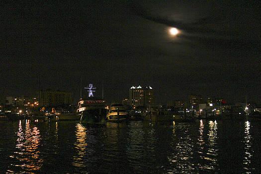 Sarasota Harbor by Marta Alfred