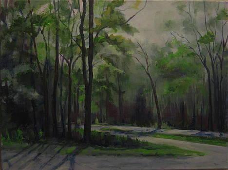 Saratoga Battlefield by Terri Messinger