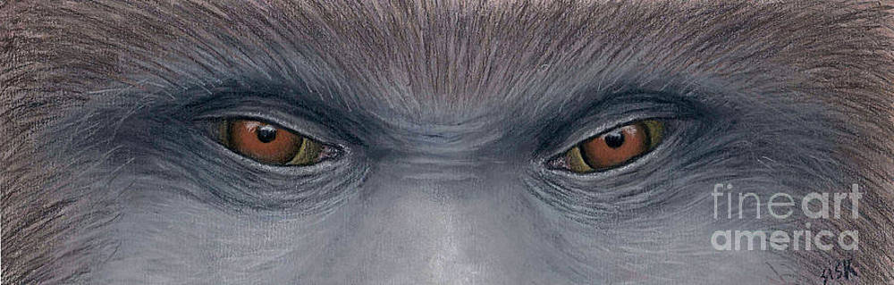 Rebekah Sisk - Sasquatch Eyes
