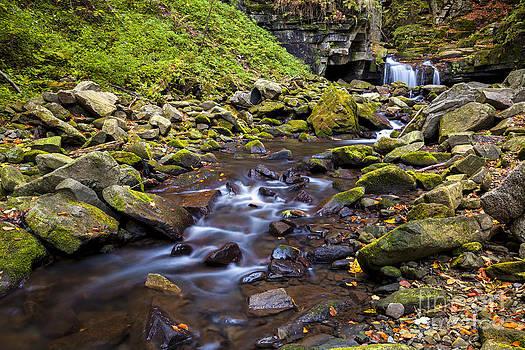 Katka Pruskova - Satina Creek VI