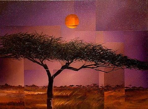 Savane by Laurend Doumba