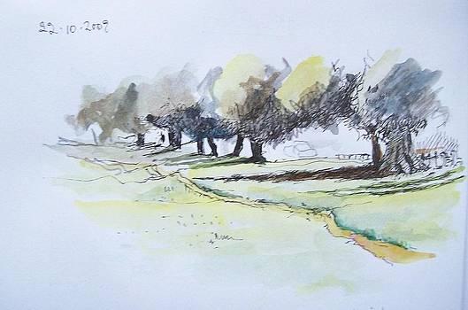 Savannah Path by Mary Adam