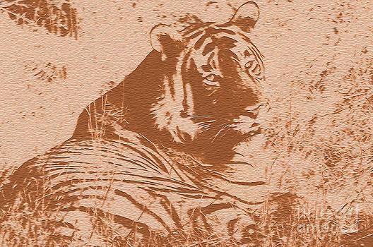 Manjot Singh Sachdeva - Save Tiger